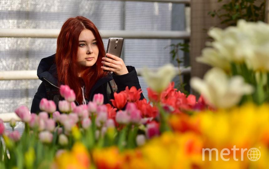 В Москве репетируют весну. Фото Василий Кузьмичёнок