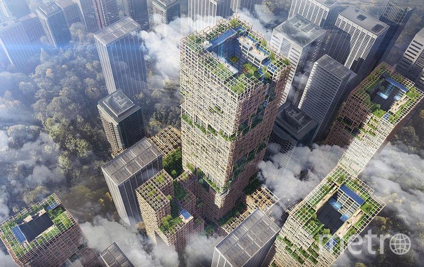 Здание будет экологичным. Фото Sumitomo Forestry