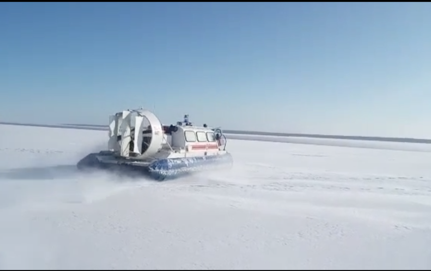 ВФинском заливе 16 рыбаков сняли сольдины