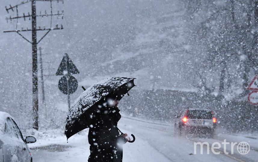 Албания. Фото AFP
