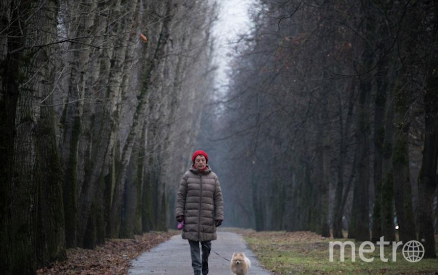 Пожилые люди в Москве смогут жить активно и достойно. Фото РИА Новости
