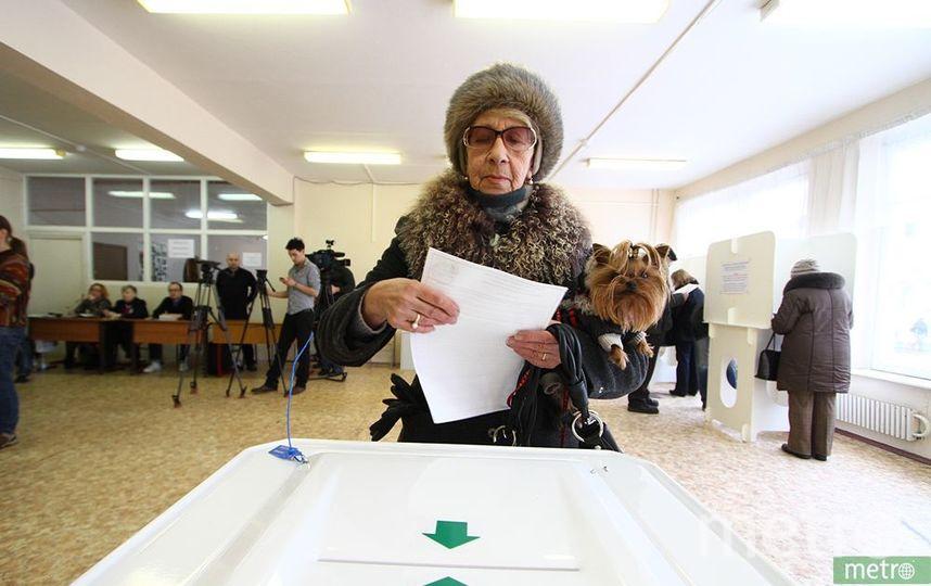 Глава ЦИК оценила подготовку Корпуса наблюдателей ОП Москвы на выборах президента. Фото Василий Кузьмичёнок