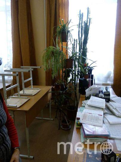 Стойка с цветами в классе русского языка и литературы | фото из архива родителей учеников 5 «а» класса школы № 381.
