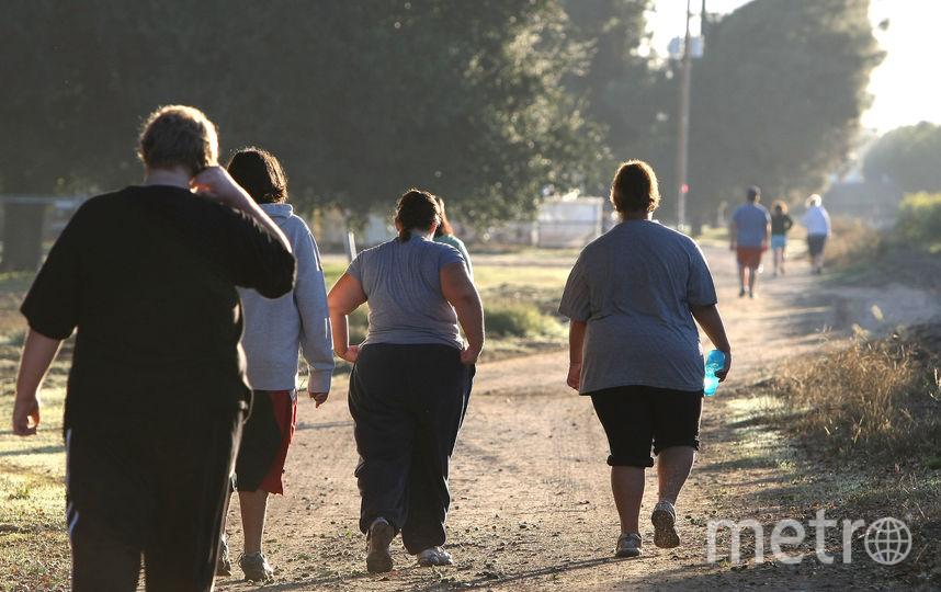 Лишний вес повышает риск развития рака, считают учёные. Фото Getty