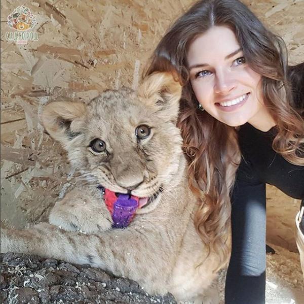 Львица Астра. Фото Скриншот Instagram: zoopark_vl