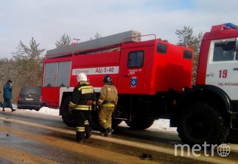 Фото: 33.mchs.gov.ru.