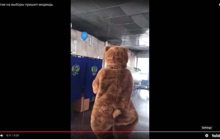 А ещё пришёл медведь. Фото Скриншот Youtube