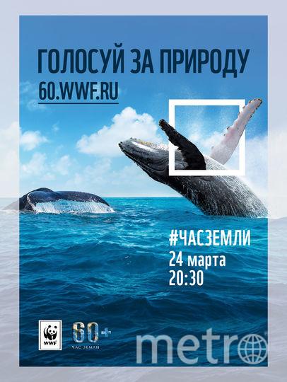 """Акция """"Час Земли"""" пройдёт 24 марта. Фото Предоставлено пресс-службой WWF России"""