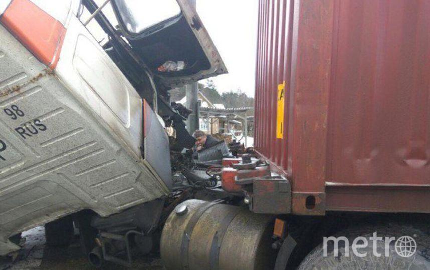 Под Тосно столкнулись маршрутный автобус и фура. Фото ДТП/ЧП, vk.com