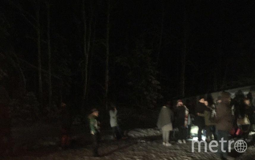 В Псковской области автобус с детьми попал в ДТП: Фото. Фото ДТП и ЧП | Санкт-Петербург | Питер Онлайн | СПб