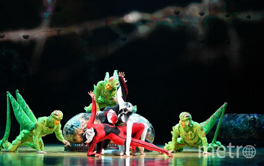 Cirque du Soleil. Фото Предоставлено организаторами