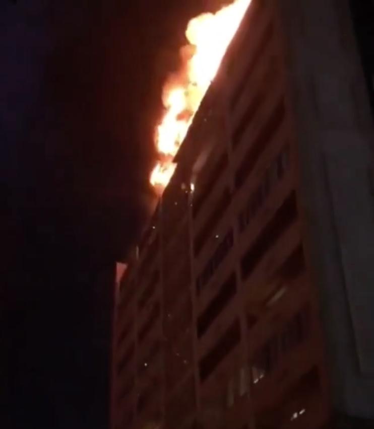 Скриншот из видео. Фото Instagram @chechnyatoday_95