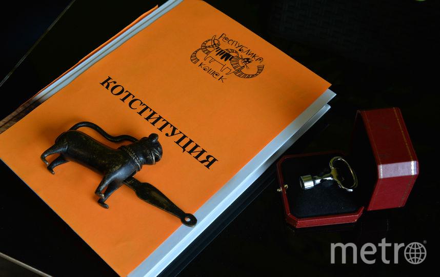 Подарки президенту Республики Кошек. Фото Республика Кошек vk.com/cats_republic, vk.com