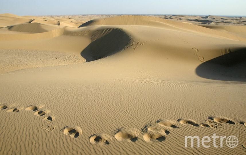 Площадь Сахары увеличилась на 10%. Фото Getty