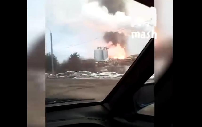 Пожар на деревообрабатывающем складе под Петербургом охватил 2000 кв. метров. Фото Скриншот YouTube