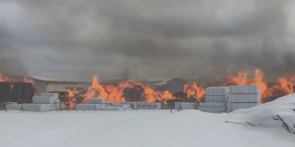 Пожар на деревообрабатывающем складе под Петербургом охватил 2000 кв. метров. Фото Скриншот видео vk.com/spb_today
