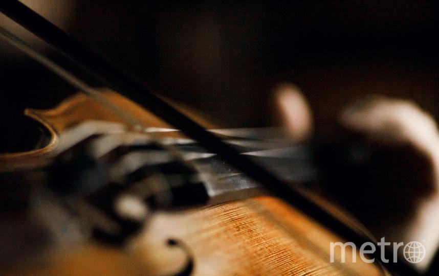 Послушать музыку изнутри оркестра пришли более 200 посетителей. Фото Михаил Вильчук, предоставлены организаторами