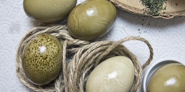 Для получения зелёного цвета для яиц понадобися сушеная крапива.