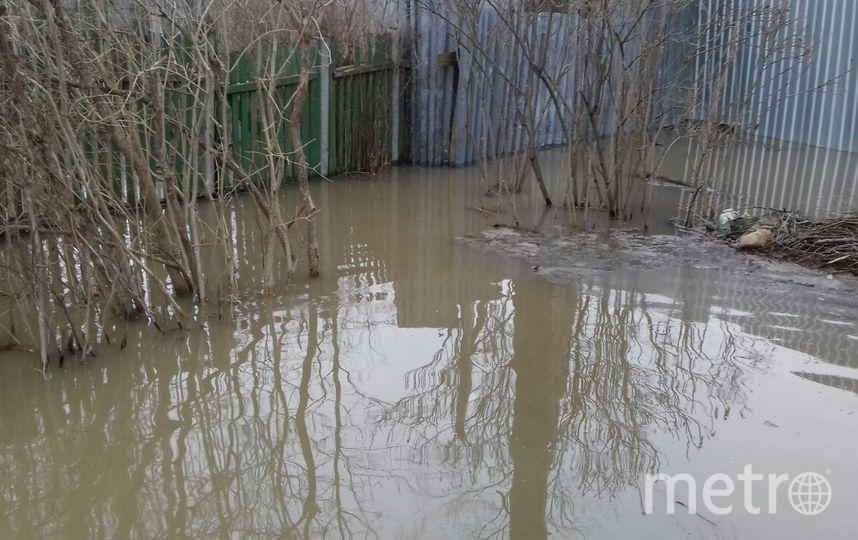 Под Петербургом затопило дачные участки. Фото vk.com