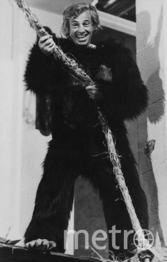 Жан-Поль Бельмондо. 1977 в костюме гориллы. Фото Getty