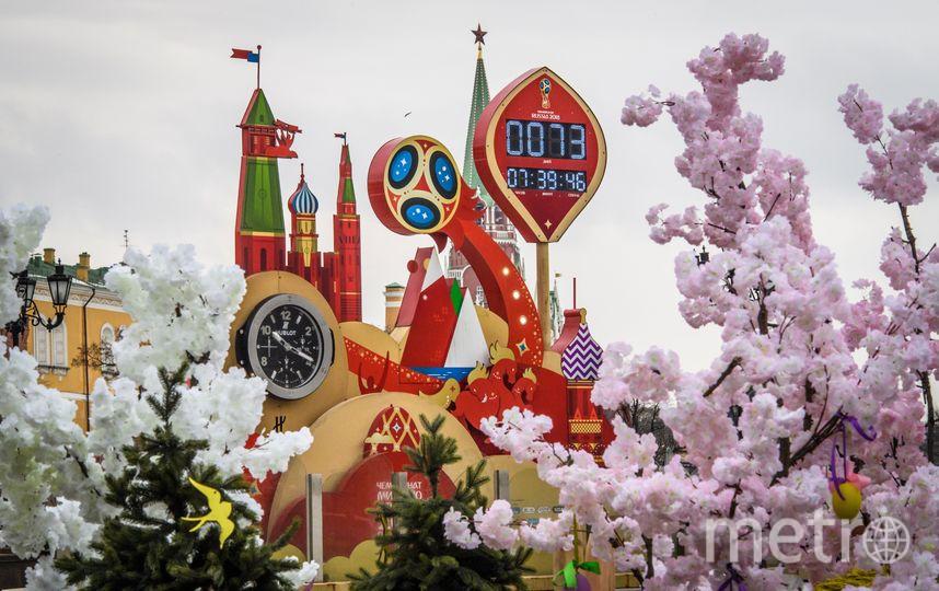 Чемпионат мира по футболу 2018 пройдет с 14 июня по 15 июля в 11 городах России на 12 стадионах. Фото AFP