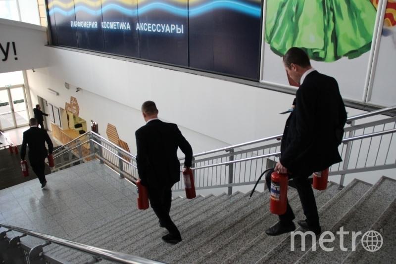 Предоставлены ГУ МЧС по Ленобласти.