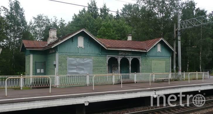 Железнодорожный вокзал станции Дибуны. Фото kgiop.gov.spb.ru