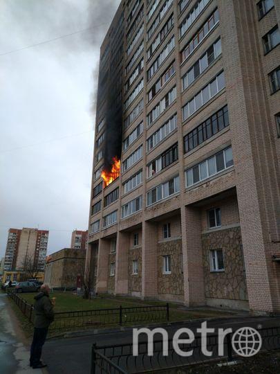 Пожар вспыхнул в квартире дома №34 по улице Есенина в Петербурге утром 10 апреля. Фото vk.com