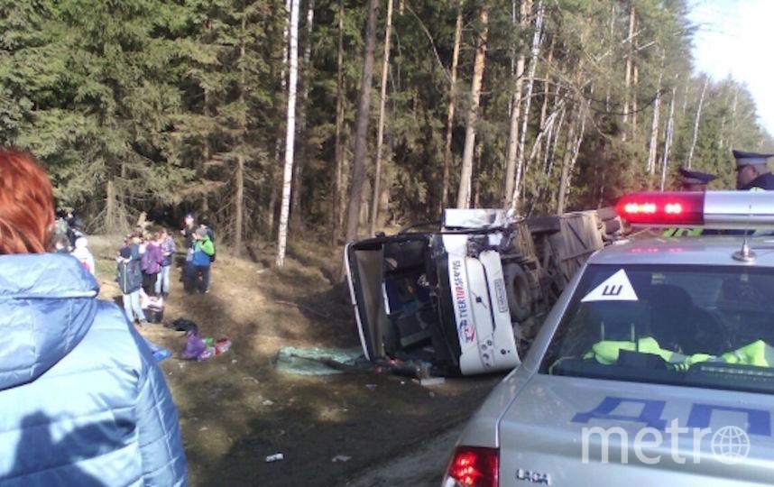 Попавший в аварию экскурсионный автобус, перевозивший детей, в Пушкинском районе Московской области. Фото РИА Новости