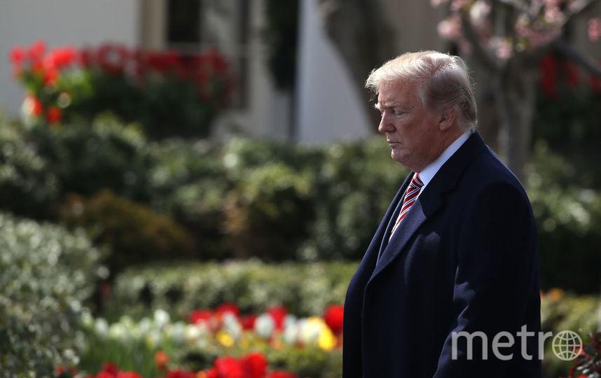 СМИ узнали о внебрачном ребёнке Дональда Трампа. Фото Getty
