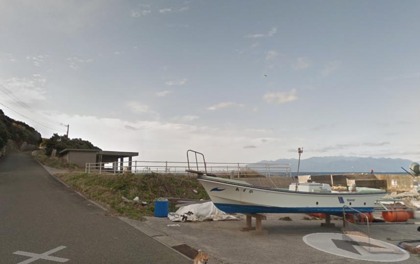 Японская собачка вошла висторию Google Maps