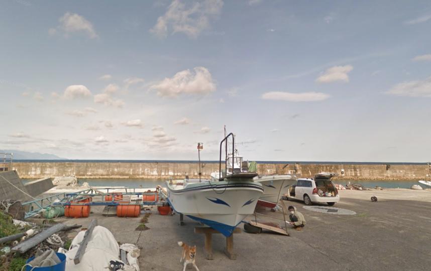 Смешная японская собачка прославилась, попавшись наGoogle Карты