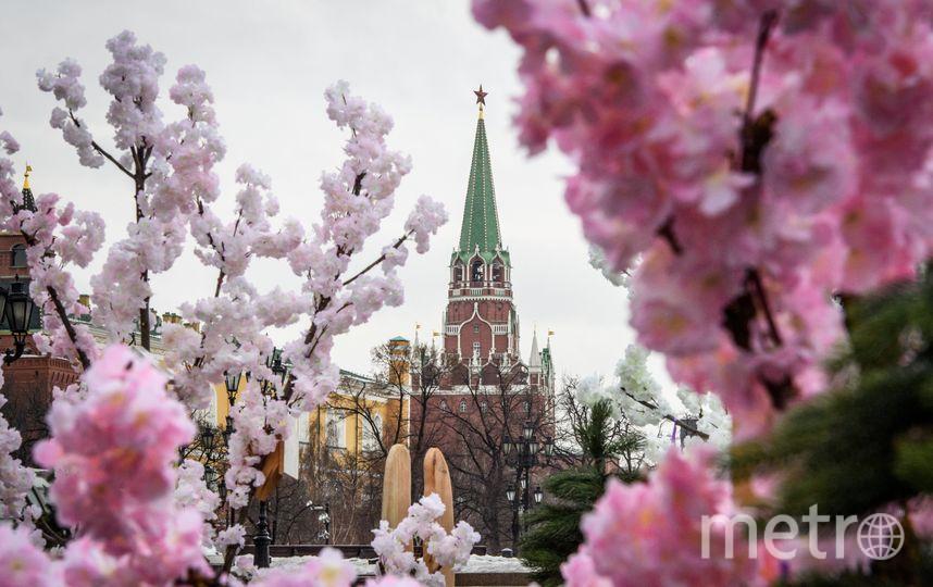 Погода в апреле пока радует москвичей. Фото AFP