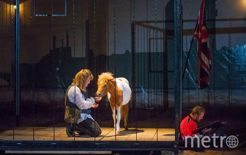 Сцена из спектакля «Danger, Гулливер». Фото предоставлено театром «Велесо»