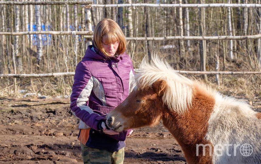 """Пони Капучино – самый молодой и перспективный актёр . Фото Алена Бобрович, """"Metro"""""""