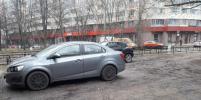 В Петербурге газоны исчезают под колёсами автомобилей