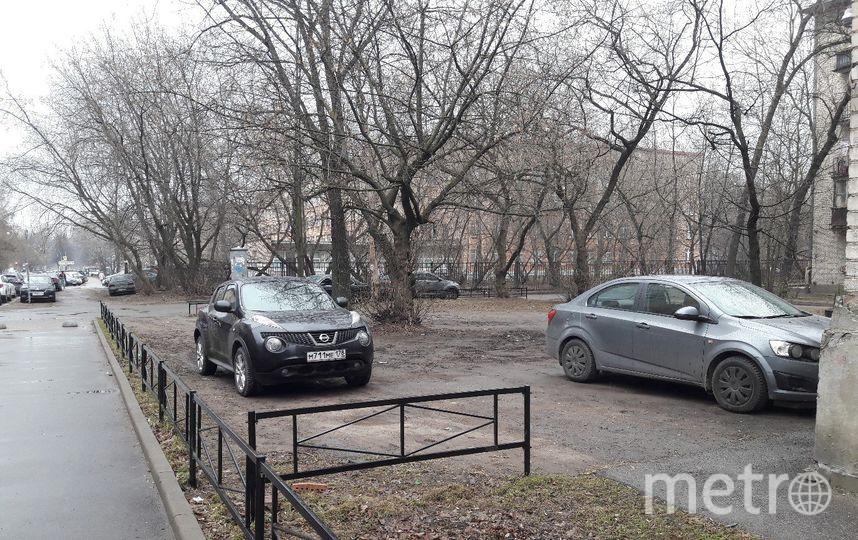 """Это слабо напоминает газон. Фото Софья Сажнева, """"Metro"""""""