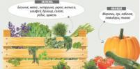 Москвичам предлагают покопаться в чернозёме