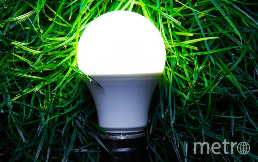 Лампочка. Фото istock