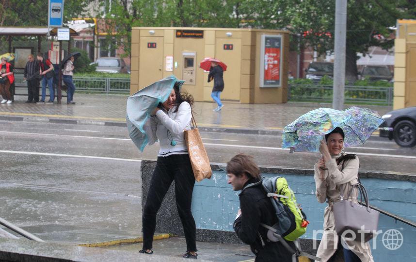 В МЧС предупредили о штормовом ветре в Москве. Фото Василий Кузьмичёнок