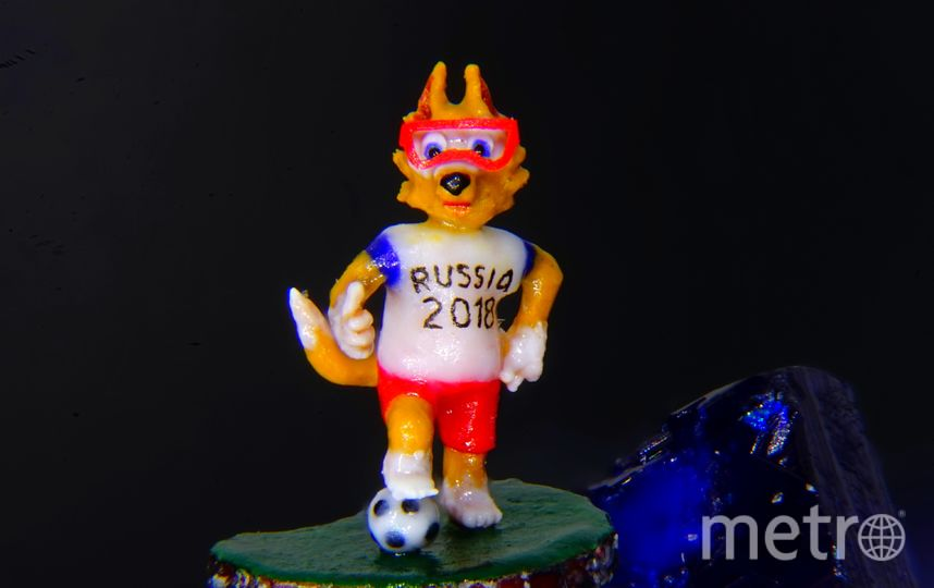 """Крошечный волк получил имя и номер. Фото предоставлено Владимиром Анискиным, """"Metro"""""""