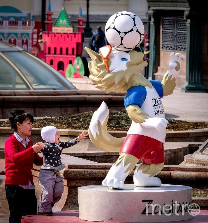 Талистам предстоящего чемпионата – волк Забивака. Фото AFP