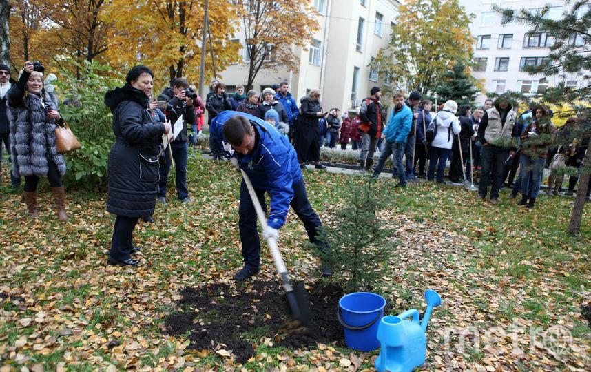 День благоустройства, архив. Фото gov.spb.ru/gov/otrasl/blago