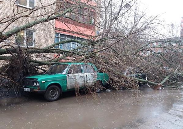 Москвичи и жители подмосковья публикуют фото последствий урагана в соцсетях. Фото Скриншот Instagram: ikalinin93