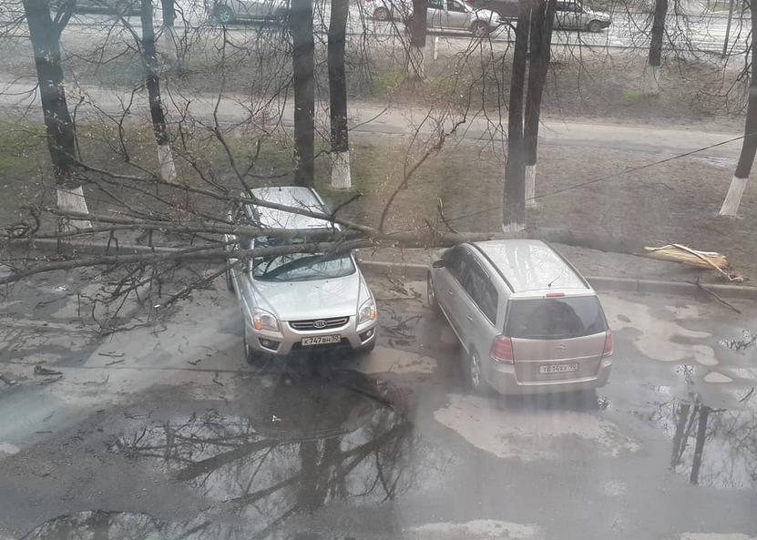 Ураган в Москве оказался смертельным: стало известно о первых жертвах. Фото скриншот instagram.com/stasyalyutina/