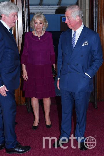 Принц Чарльз и Камилла. Фото AFP