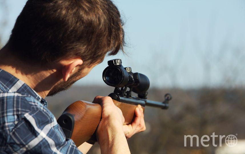 В Зауралье охотник застрелил человека, приняв его за лося. Фото Pixabay.com