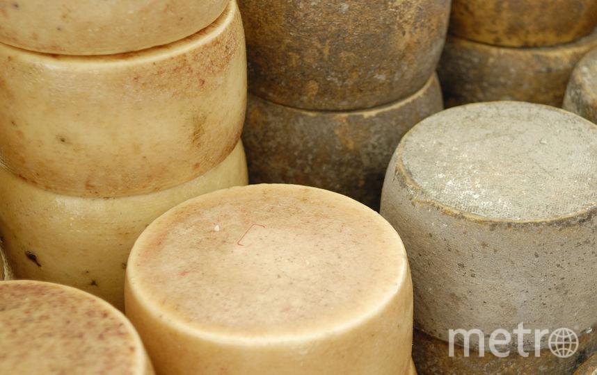Сыр с червями. Фото istock