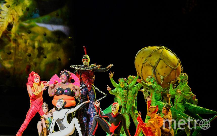 Москвичи и гости столицы смогут познакомиться с несколькими артистами Cirque du Soleil на самой высокой точке парка «Зарядье» – в Большом амфитеатре – уже 25 апреля. С 28 апреля Cirque du Soleil даст серию выступлений в Санкт-Петербурге, а уже с 8 мая – в Москве. Фото предоставлено Cirque du soleil