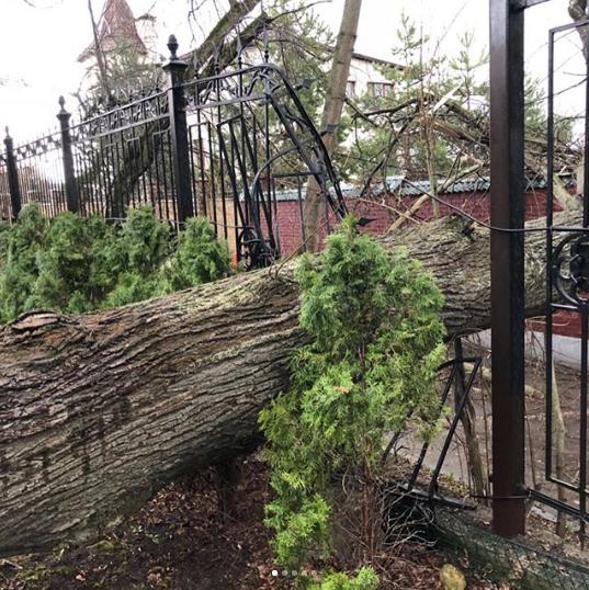 Последствия урагана на участке Пугачёвой и Галкина. Фото www.instagram.com/maxgalkinru